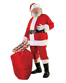 Adult Santa Plus Size Costume