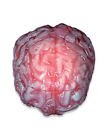 Life Size Realistic Brain - Decorations