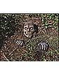 Full Skull Outdoor Prop - Decorations