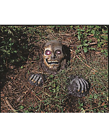 Full Skull Outdoor Prop