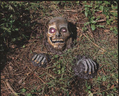 Full Skull Outdoor Prop