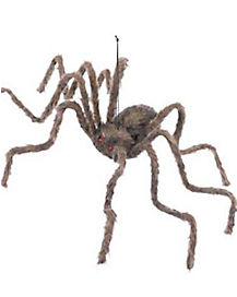 50 in Hairy Spider - Decorations