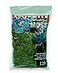 Bag of Moss