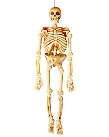 5 Ft Realistic Skeleton - Decorations