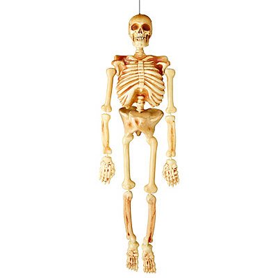 5' Realistic Skeleton Decoration