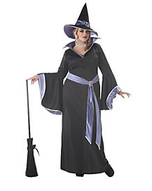 Adult Glamorous Witch Plus Size Costume