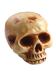 8 Inch Bottomless Skull Head - Decorations