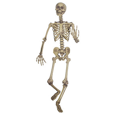 5 Foot Hanging Skeleton Decoration