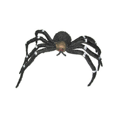 20'' Black and White Spider