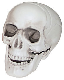 3 Inch Skull - Decorations