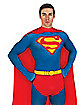 Adult Superman Skin Suit Costume - DC Comics