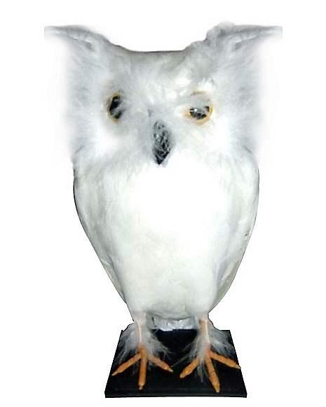 White Owl - Decorations - Spirithalloween.com
