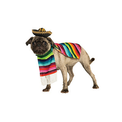Mexican Poncho and Sombrero Dog Costume