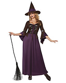 Adult Womens Purple and Brown Salem Witch Costume