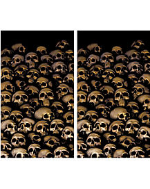 Double Window Skull Catacombs  Poster