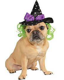Pet Witch Hat with Green Hair