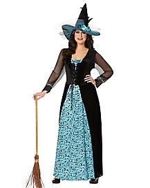 Adult Maiden Witch Plus Size Costume