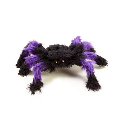 Purple Hairy Spider