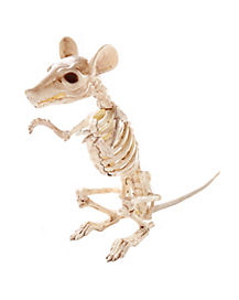 Standing  Skeleton Rat