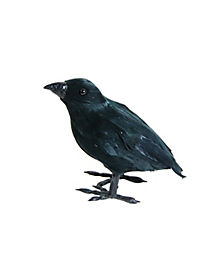 Small Feather Crow - Decorations