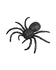 6.5 Inch Spider