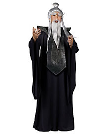 Sensei Master Adult Mens Costume