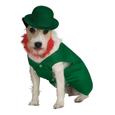Leprechaun Dog Costume