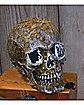 Large Horror Moss Skull