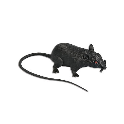 6 inch Rat With Sound