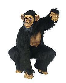 Chimpanzee Complete Adult Costume