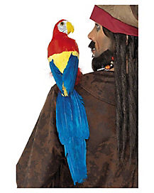 20 in Pirate Parrot