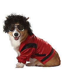 Pop Star Dog Costume