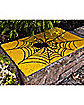 Spiderweb Nonslip Doormat