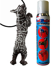 Pet Paint Whippet White