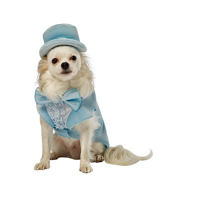 Dumb and Dumber Harry Pet Costume