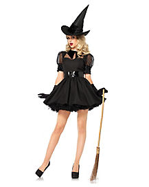 Adult Purple Bewitched Witch Plus Size Costume