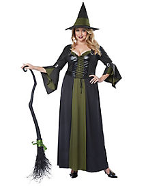 Adult Witch Plus Size Costume