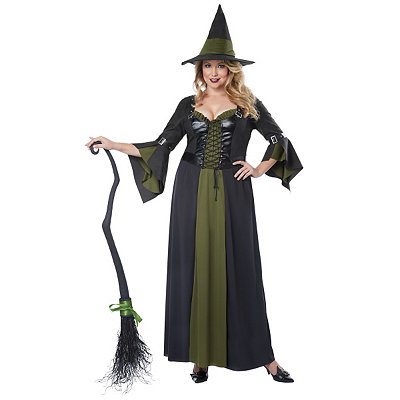 Adult Womens Plus Size Classic Witch Costume