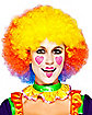 Gd Happy Clown Wig