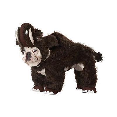 Wolly Mammoth Dog Costume