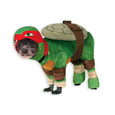 Teenage Mutant Ninja Turtles Raphael Pet Costume