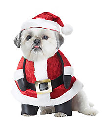 Santa Paws Dog Costume