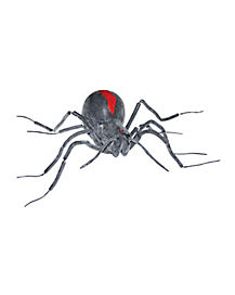 Gray Black Widow Spider - Decorations