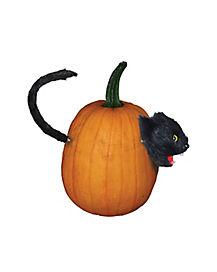 Cat Pumpkin Push In