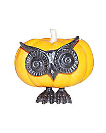 Owl Face Pumpkin Push In