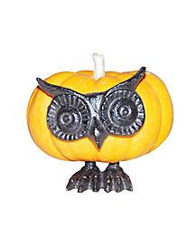 Owl Face Pumpkin Push In