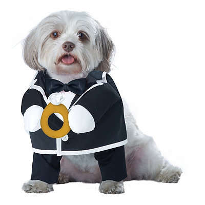 Puppy Love Groom Dog Costume