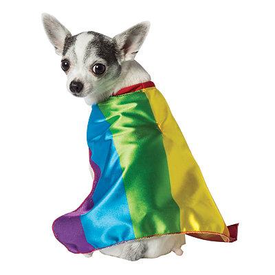 Rainbow Flag Pet Cape