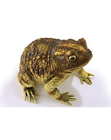 10 Inch Realistic Frog Decoration