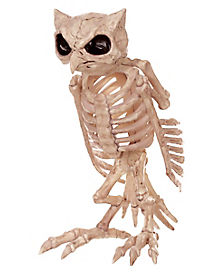 13.5 Inch Skeleton Owl - Decorations